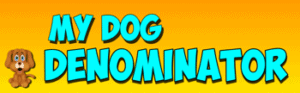 Mr. R.'s Denominator fraction song- My Dog Denominator