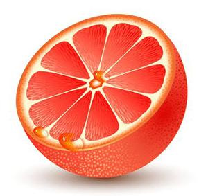 grapefruit cartoon